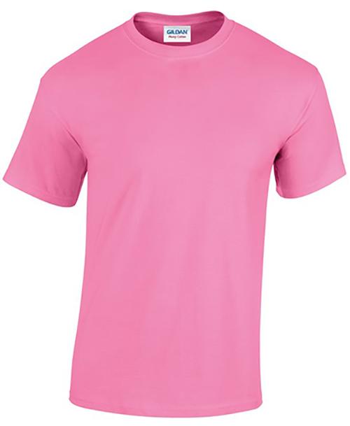 Azalea Gildan Heavy Cotton T-Shirt